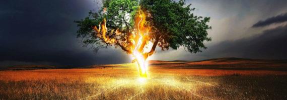 Požarno strojelomno zavarovanje